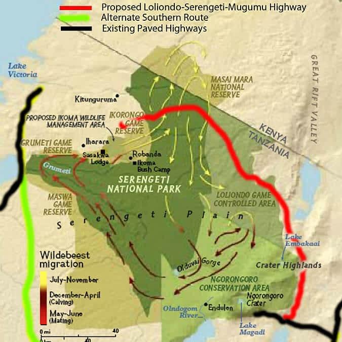 The Serengeti Highway