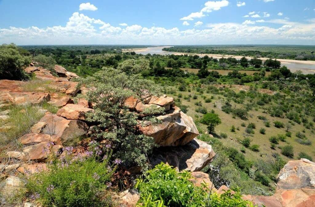 World Heritage Site Threatened by Coal Mine