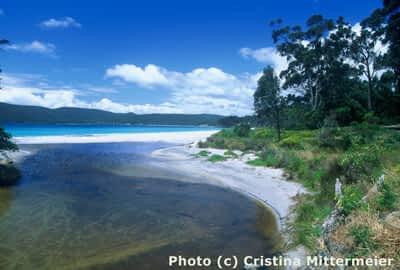 What is Marine Wilderness?