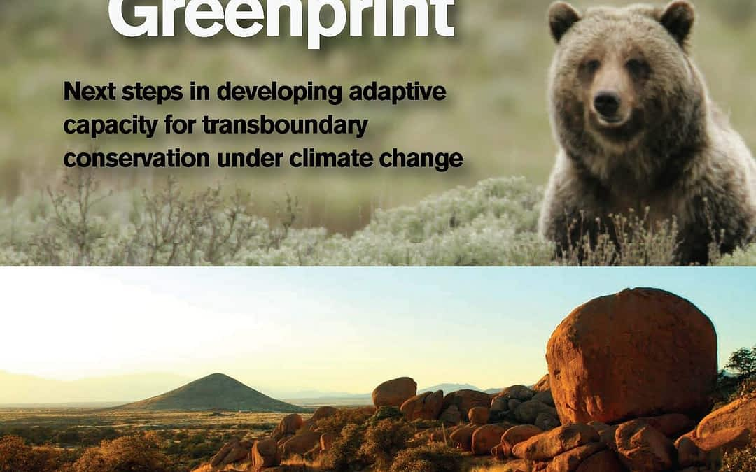 Report from the WILD9 Strategy Forum: Transboundary Environments and Adaptation to Climate Change