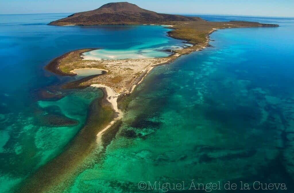 Advancing Ocean Conservation: Marine Wilderness 10+10 Project