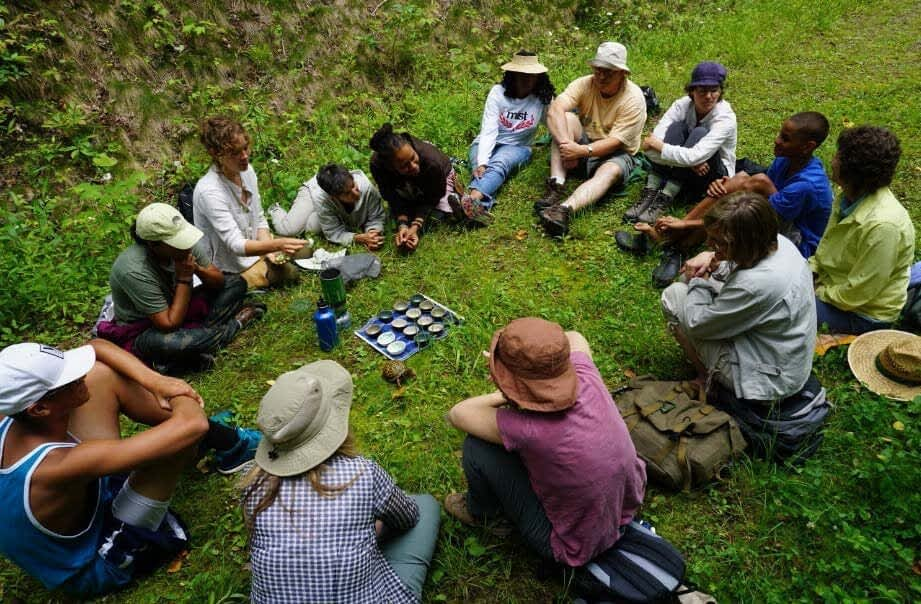 Connecting to Nature with Forest Therapy