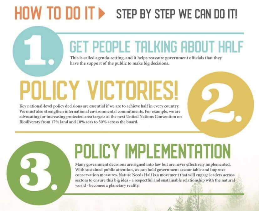 Why Nature Needs You Infographic