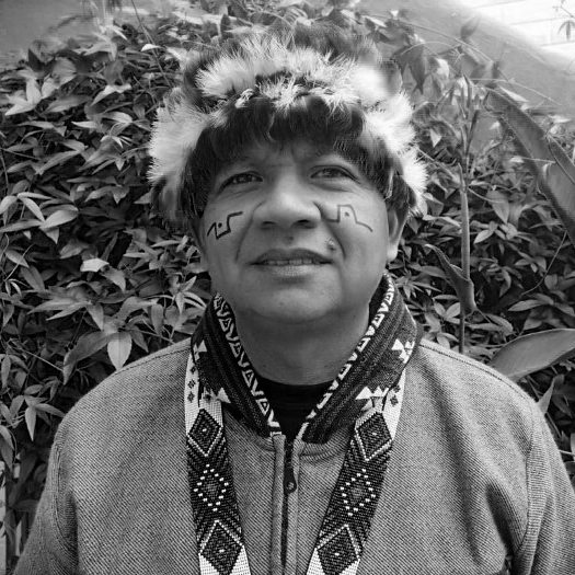 A Statement From the Indigenous Organizations of the Amazon Basin (COICA)