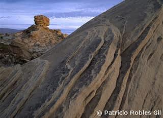 Big Bend, Mexico, Photo by Patricio Robles Gil