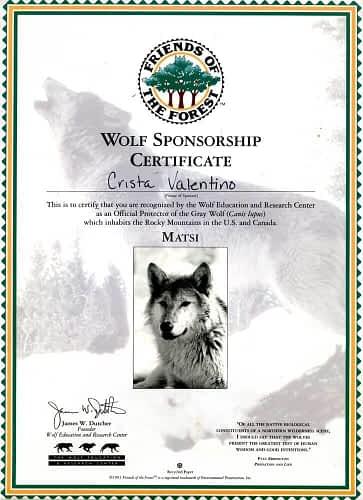 Matsi certificate