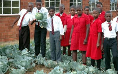 EcoSchools at Isandlwana