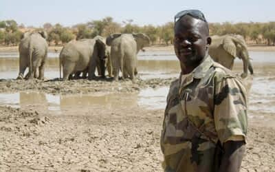 Making Teamwork for African Wildlife Possible