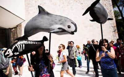 Procession to Honor the Vaquita: A Ritual to Heal our Relationship with Nature