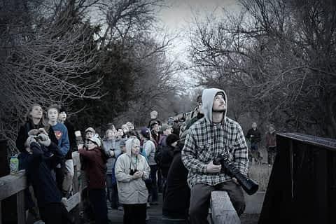 Spectators © Ryan Muckenhirn
