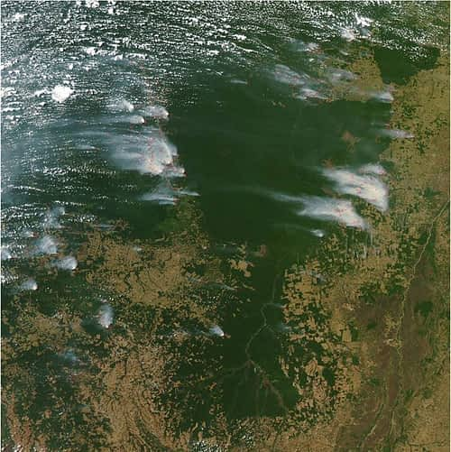 Satellite image of Kayapo lands