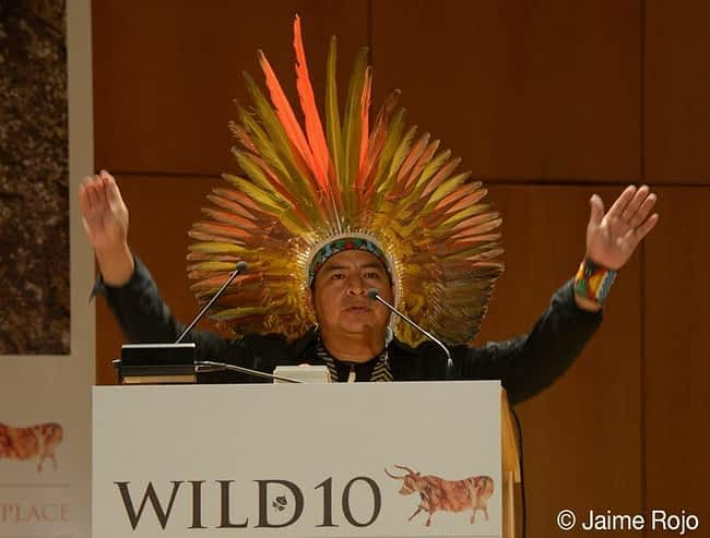 Tashka Yawanawa opening WILD10 with an Indigenous blessing