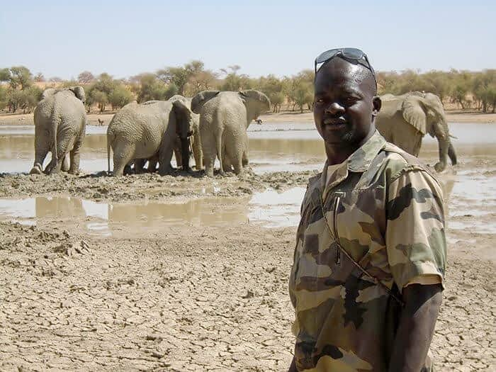 Mali Elephant Project ranger watching over a group of elephants