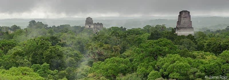 Tikal Jaime Rojo-c