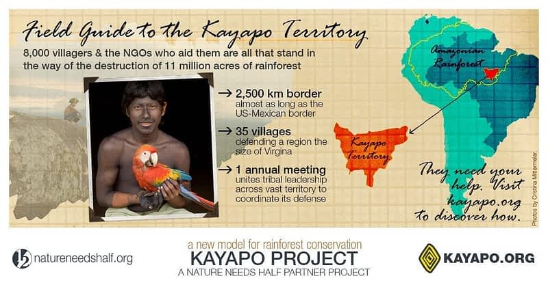 Fact_Sheet_Kayapo