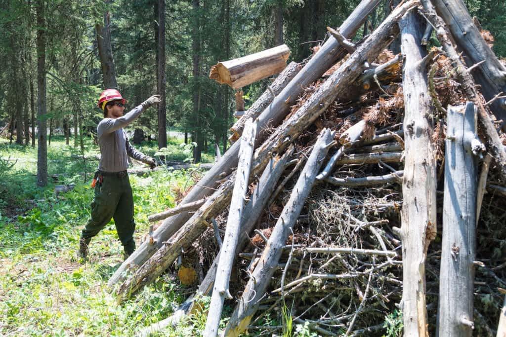 /m/083vt Tree Buckrail - Jackson Hole, news