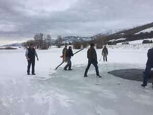 Drowning elk saved by passersby 09738 Ice skating Buckrail - Jackson Hole, news