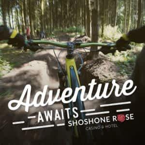 Mountain bike Bicycle Buckrail - Jackson Hole, news